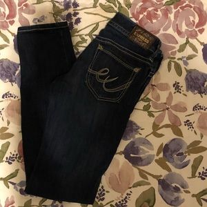 Express Jeans Skinny Stella- Low Rise